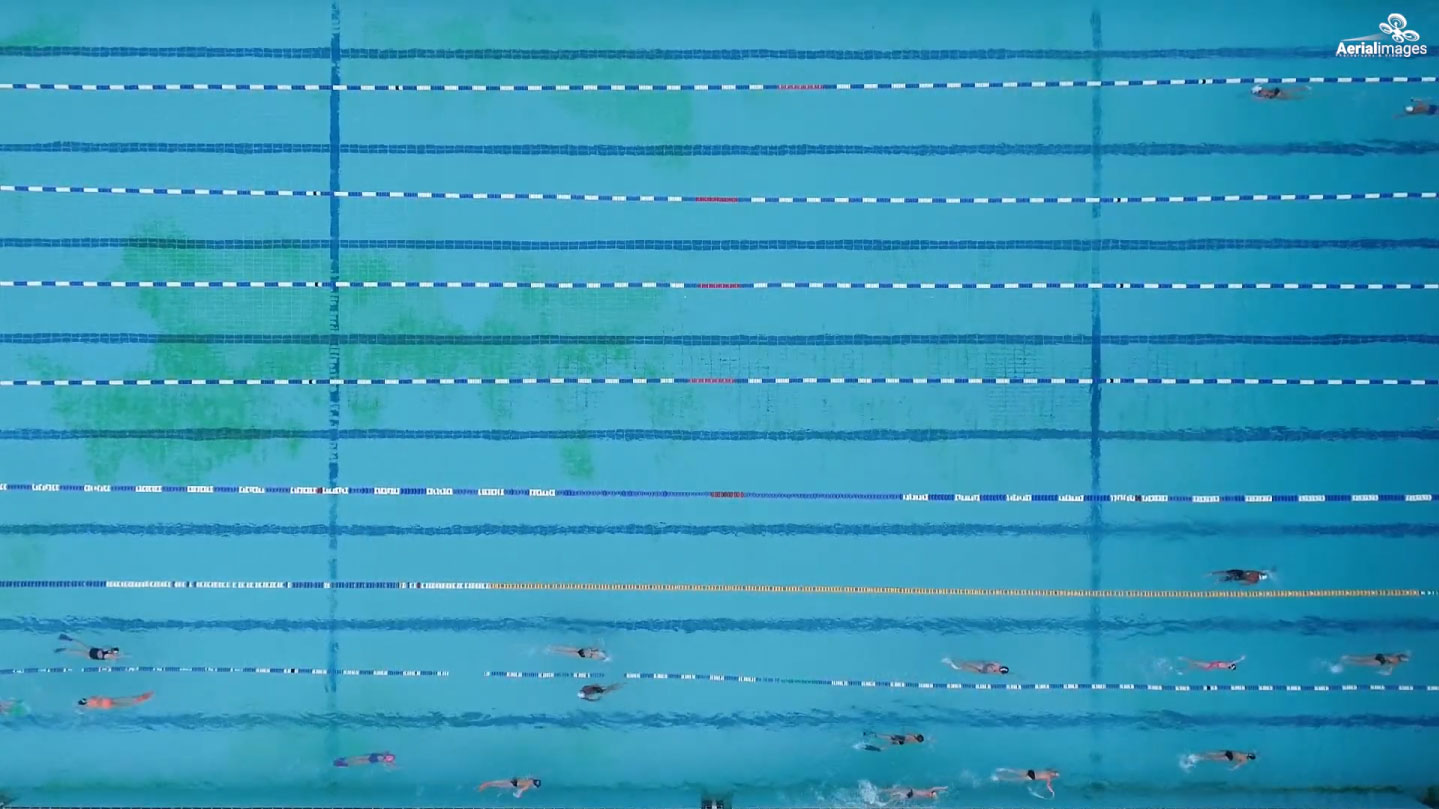 Swimming pool with marked lanes and swimmers